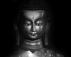 [reportage] Mudra: le mani del Buddha