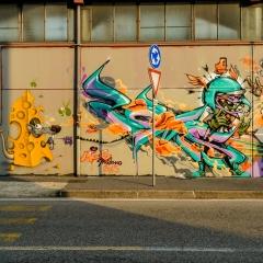 Trezzano S/N (MI) - Giugno