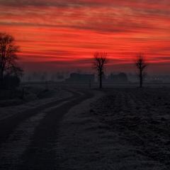 La strada nei campi