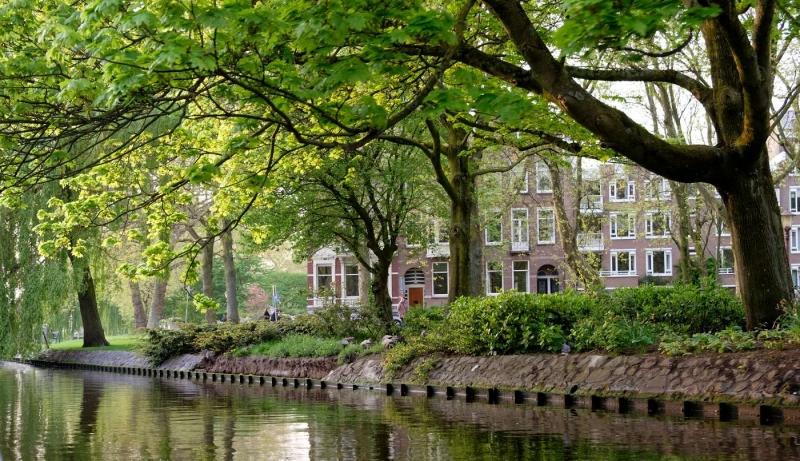 Canale con albero