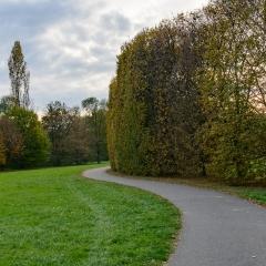 Autunno parco 4