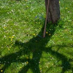 Del Favero Aldo contest Nikonland aria di primavera 1