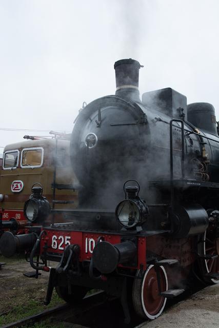 Immagine Allegata: treno.jpg