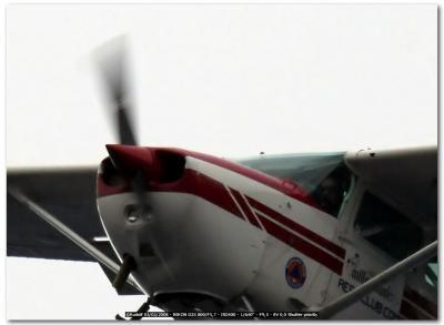 Immagine Allegata: _DSC7284_crop.jpg