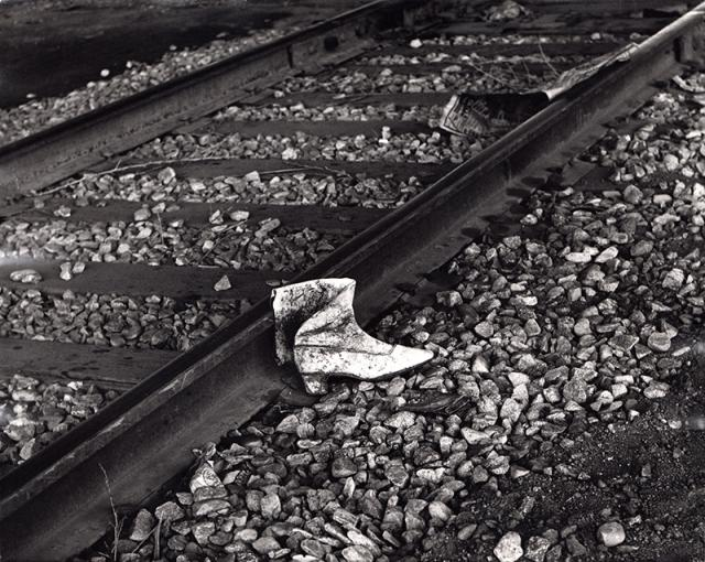 Immagine Allegata: Wanderer-2-11x14.jpg