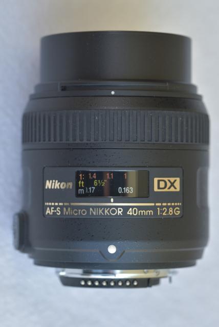 Immagine Allegata: 0500 _D8X3880 29032016  1-80 sec a f - 8,0 Max Aquila photo (C).JPG