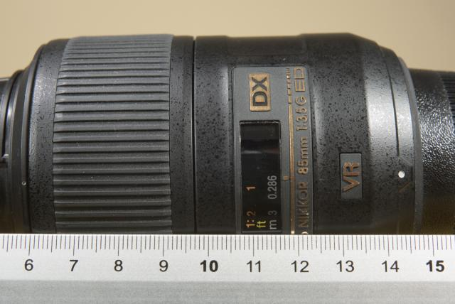 Immagine Allegata: 0023 _D8X5495 30042016  1-125 sec a f - 16 Max Aquila photo (C).JPG