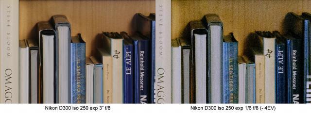D300_0-4ev.jpg