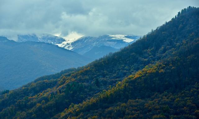 Immagine Allegata: colline.jpg