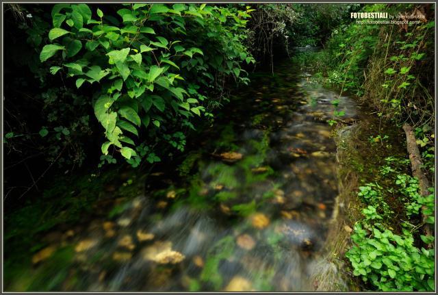 Immagine Allegata: 23_PLS_0417.jpg