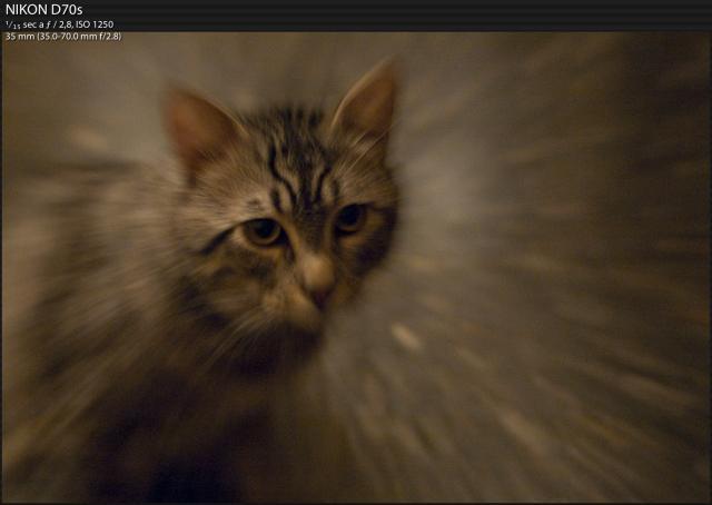 Immagine Allegata: Schermata 2012-10-03 alle 17.11.01.jpg