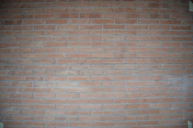 Immagine Allegata: muro7.jpg