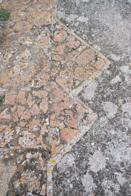 Immagine Allegata: 0158 _NDF0818 30 mm  1-320 sec a f - 4,0 Max Aquila photo.jpg