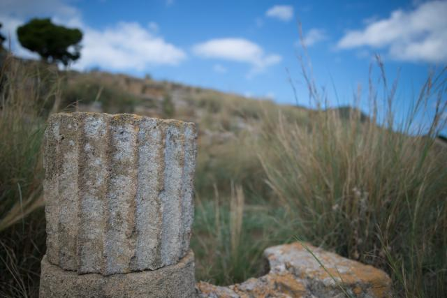 Immagine Allegata: 0153 _NDF0791 25 mm  1-4000 sec a f - 2,0 Max Aquila photo.jpg