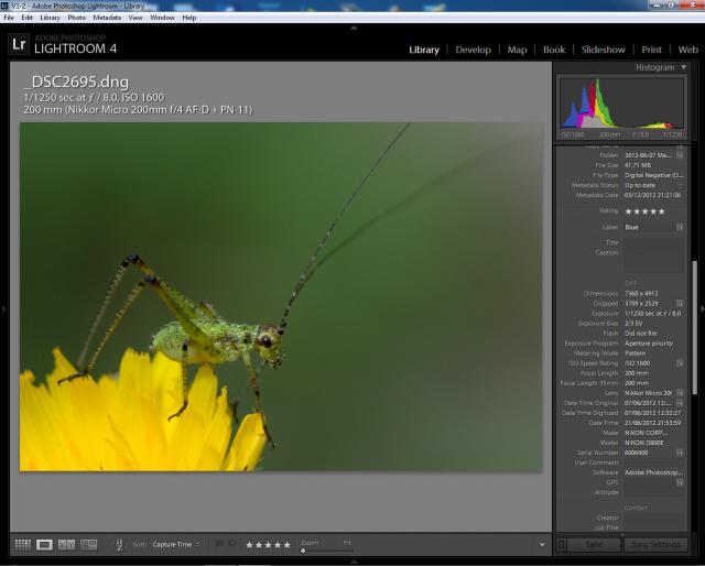 Immagine Allegata: EXIF - Micro Nikkor 200 AFD LR4.jpg