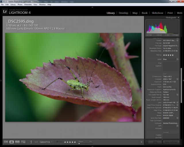 Immagine Allegata: EXIF - Leica 100 APO LR4.jpg
