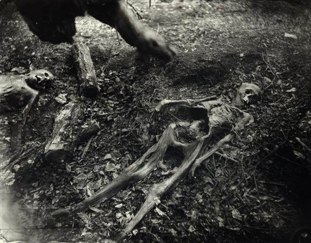 Immagine Allegata: sally_mann_body_farm_bw_10.jpg