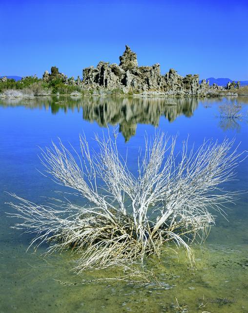 Immagine Allegata: Mono Lake.jpg