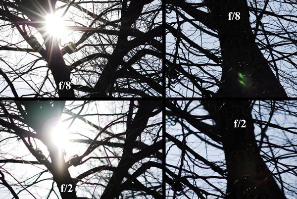 Immagine Allegata: flares.jpg