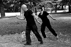 [reportage] Non è più strano... il Tai Chi Chuan nei Parchi a Milano.