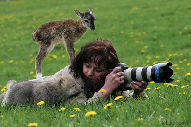 Wildlife photography.jpg