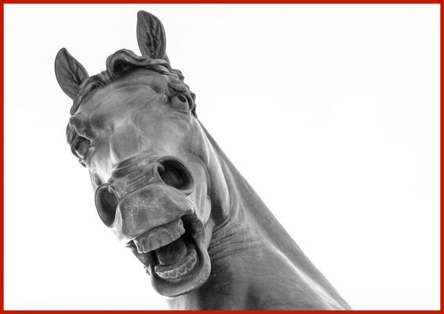 Cavallo_Leonardo.jpg